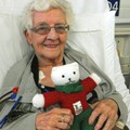 TG Ted accompanies Mrs Marion Hutton, a member of Stocksbridge and Deepcar Guild when she is undergoing treatment at hospital!